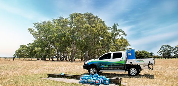 Beachport Ute and products on farm