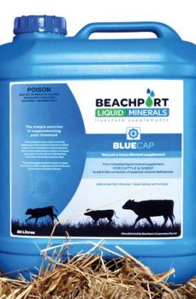 Beachport Liquid Minerals: Liquid Livestock Supplements